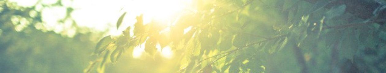 アリーザレクトの健康ブログ